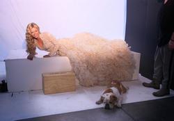 Софи Монк, фото 1271. Sophie Monk Angel Champagne photoshoot, january 7, foto 1271