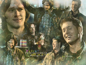 http://img223.imagevenue.com/loc889/th_370820315_Supernatural_Plucky_Nadin_122_889lo.jpg